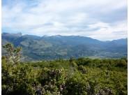 H007 - 64 hectareas sobre Callejon Gingins próximo a San Martin de los Andes