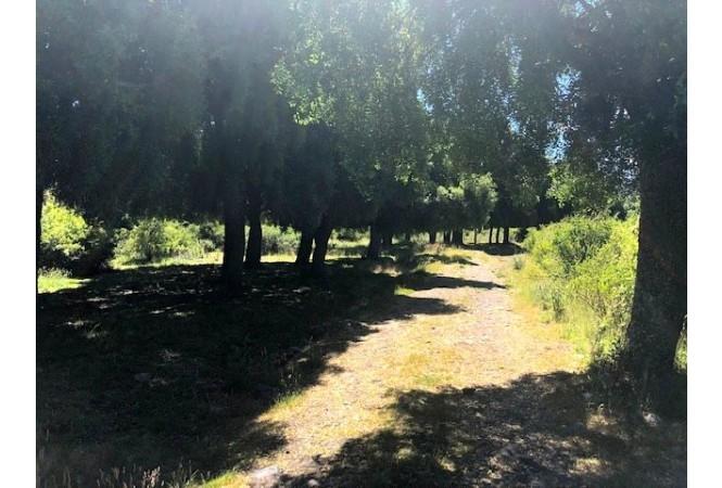 H020 Exclenete hectarea en Altos del Chapelco