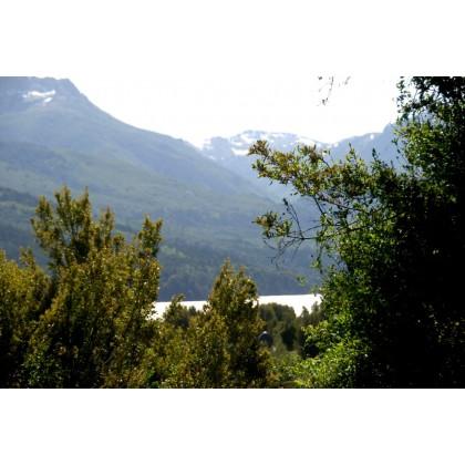 LM041- Mza E1 y Mza X Lotes en Lago Meliquina, con vistas al lago, EXCELENTE!!!