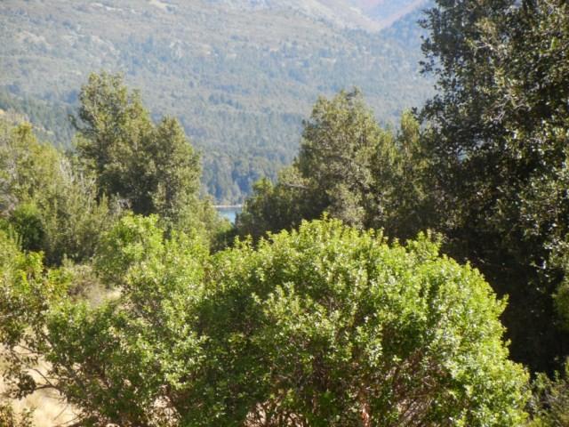 LM021- Manzana E1 2000 m2 Meliquina para turismo