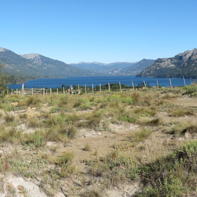 LM015 - Mza H2 Lote en lago Meliquina de 1000 m2