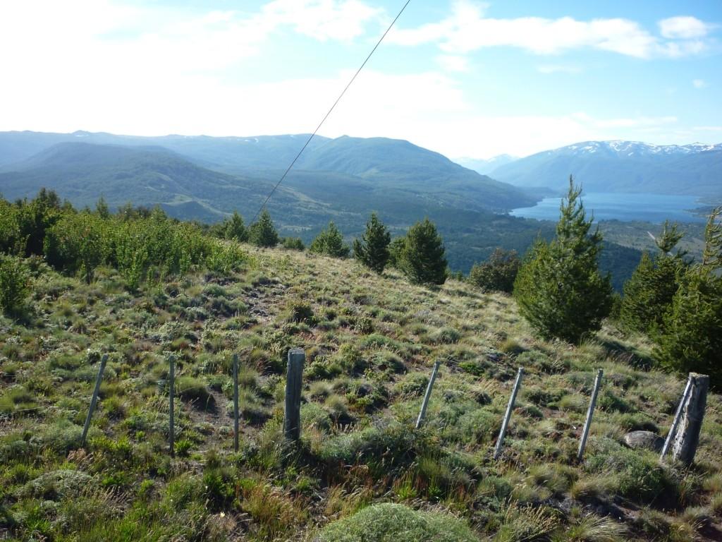 H007 - 32 hectareas sobre Callejon Gingins próximo a San Martin de los Andes